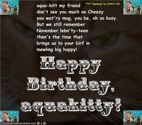 "Happy Birthday, aquakitty! (TTO ""Aqualung"" by Jethro Tull)  Happy Birthday, aquakitty! (TTO ""Aqualung"" by Jethro Tull)"