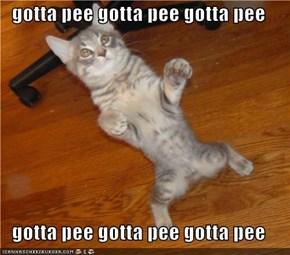 gotta pee gotta pee gotta pee  gotta pee gotta pee gotta pee