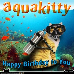 Happy Birthday AquaKitty . . . . .