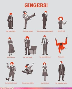 Gingers: A Celebrity Based Infographic