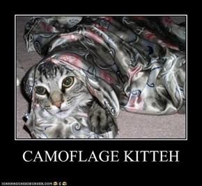 CAMOFLAGE KITTEH
