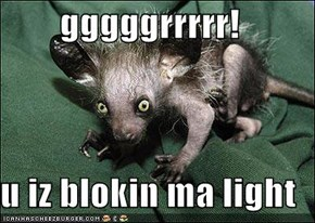 gggggrrrrr!  u iz blokin ma light