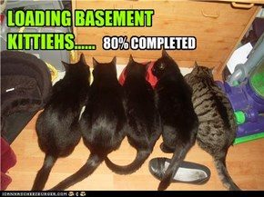 LOADING BASEMENT KITTIEHS......
