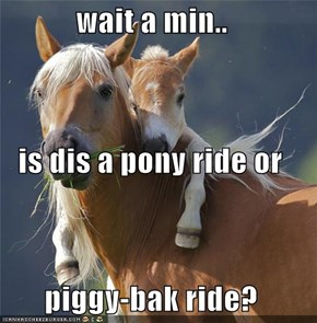 wait a min.. is dis a pony ride or piggy-bak ride?