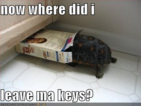now where did i  leave ma keys?