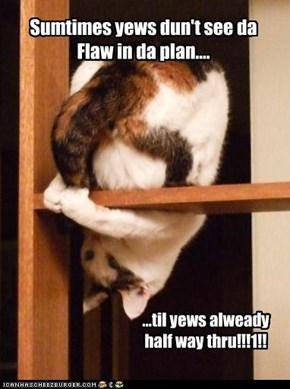Sumtimes yews dun't see da Flaw in da plan....
