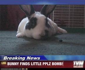 Breaking News - BUNNY FINDS LITTLE PPLZ BOMB!