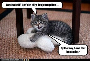 Voodoo Doll? Don't be silly,  it's just a pillow....