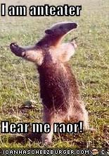 I am anteater  Hear me raor!
