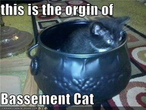 this is the orgin of  Bassement Cat