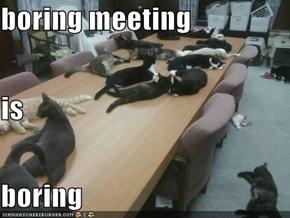 boring meeting is boring