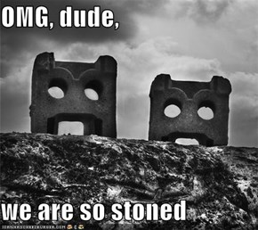 OMG, dude,  we are so stoned