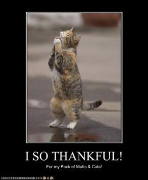 I SO THANKFUL!