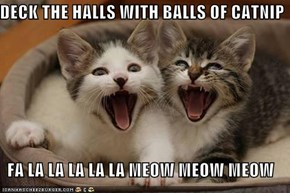 DECK THE HALLS WITH BALLS OF CATNIP   FA LA LA LA LA LA MEOW MEOW MEOW