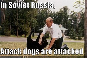 In Soviet Russia,  Attack dogs are attacked