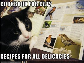 COOKBOOK FOR CATS  RECIPES FOR ALL DELICACIES
