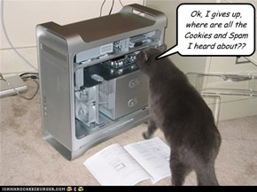 Ok, I gives up, where are all the Cookies and Spam I heard about??