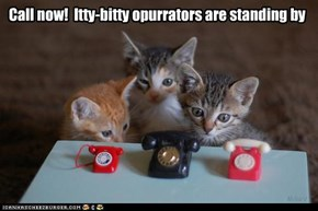 Call now!  Itty-bitty opurrators are standing by
