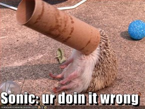 Sonic: ur doin it wrong