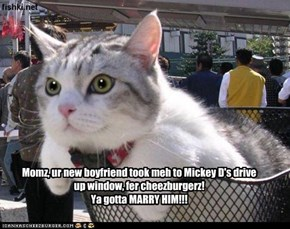 Momz, ur new boyfriend took meh to Mickey D's drive up window, fer cheezburgerz! Ya gotta MARRY HIM!!!