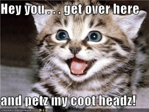 Hey you . . . get over here  and petz my coot headz!