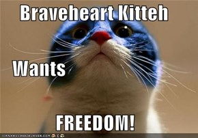 Braveheart Kitteh    Wants FREEDOM!