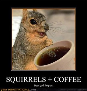 SQUIRRELS + COFFEE