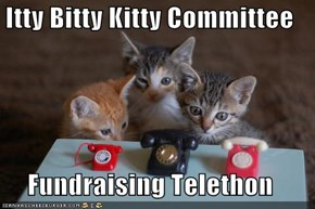 Itty Bitty Kitty Committee  Fundraising Telethon