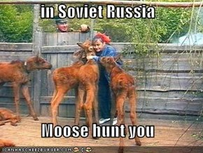 in Soviet Russia  Moose hunt you