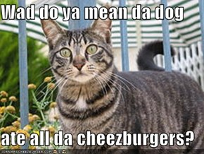 Wad do ya mean da dog  ate all da cheezburgers?