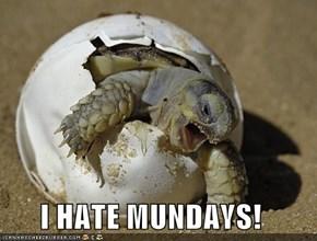 I HATE MUNDAYS!