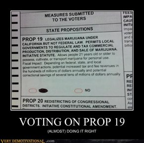 VOTING ON PROP 19