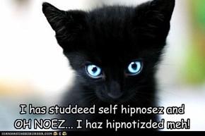 I has studdeed self hipnosez and OH NOEZ... I haz hipnotizded meh!