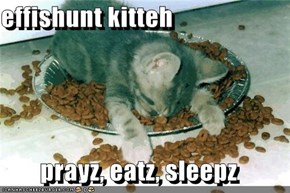 effishunt kitteh  prayz, eatz, sleepz