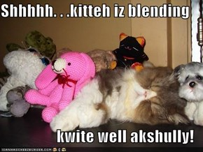 Shhhhh. . .kitteh iz blending  kwite well akshully!