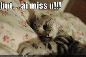 but. . .ai miss u!!!