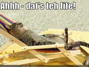 Ahhh - dat's teh life!