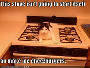 This stove isn't going to start itself  an make me cheezburgers.