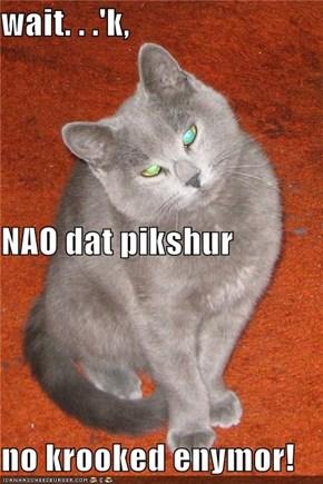 wait. . .'k,  NAO dat pikshur no krooked enymor!