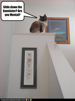 Slide down the Bannister? Are you Mental?