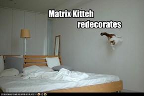 Matrix Kitteh                                      redecorates