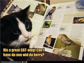 Dis a great CAT-alog! Can I have da one wid da berry?