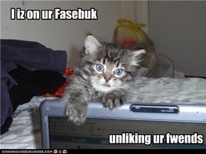 I iz on ur Fasebuk