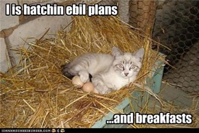 I is hatchin ebil plans