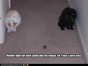 Neither light nor dark could take the mouse, for it was a grey area.
