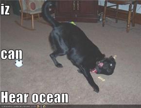 iz can  Hear ocean