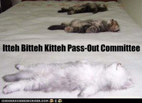 Itteh Bitteh Kitteh Pass-Out Committee