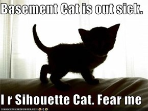 Basement Cat is out sick.  I r Sihouette Cat. Fear me