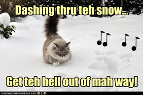 Dashing thru teh snow...     Get teh hell out of mah way!