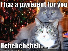 I haz a pwrezent for you  Heheheheheh.....
